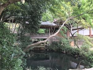 Godaison pond