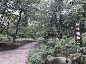 Jindaiji Botanical Garden
